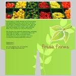 mini-presentation-folder-26