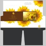 mini-presentation-folder-47