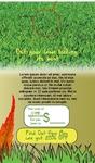 Lawn Care Bundle
